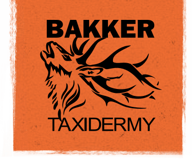 Bakker Taxidermy